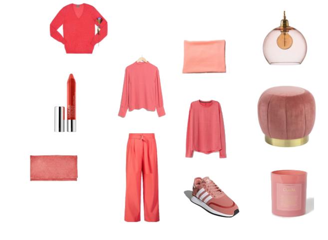 Trendfarbe 2019 Living Coral Basma Magazine